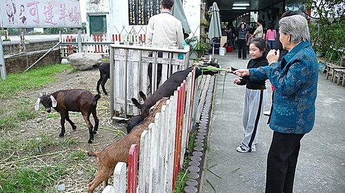 陳氏鑑湖堂 - 宜蘭旅遊 18