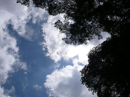 20080525-霞喀羅古道-Day1-2 18