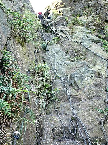 20080518-無耳茶壺山、半屏山、燦光寮山(一) 24