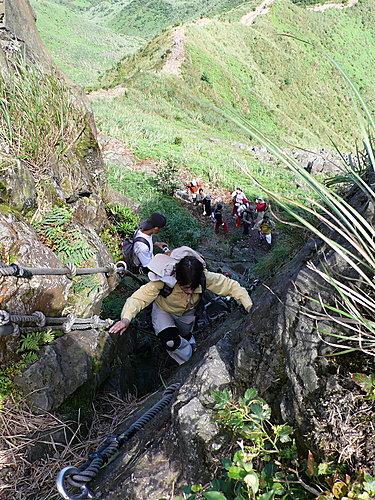 20080518-無耳茶壺山、半屏山、燦光寮山(一) 25