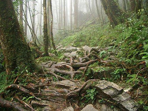 20061203-松羅湖苦難行(巧遇山友與上切攀繩)