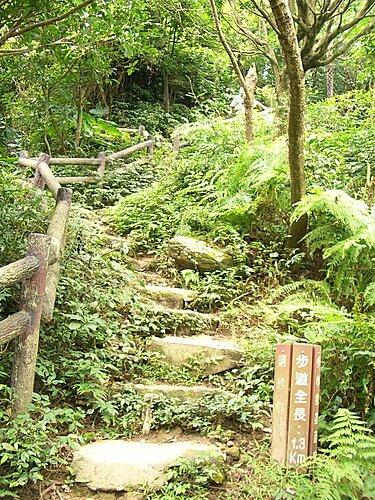 20060618-烘爐地爬山 (二) 2
