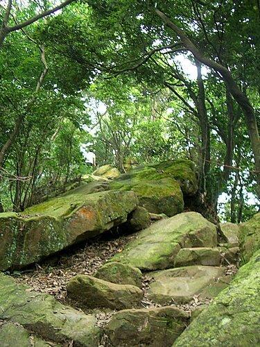20060618-烘爐地爬山 (二) 4
