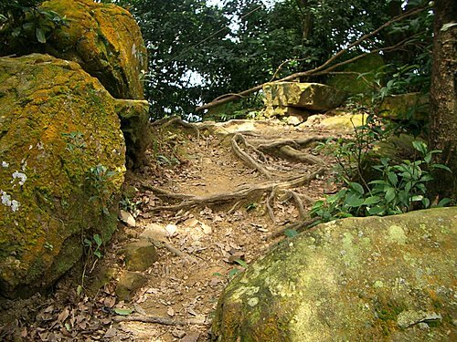 20060618-烘爐地爬山 (二) 5