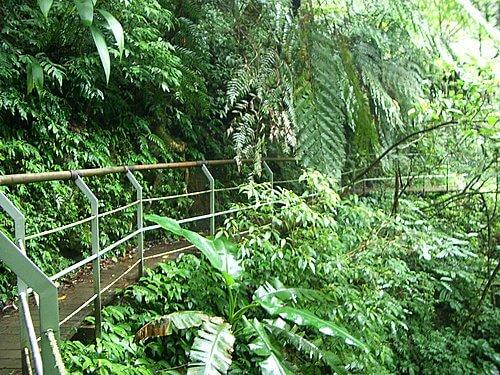 20060529-宜蘭之旅(林美石磐步道) 7