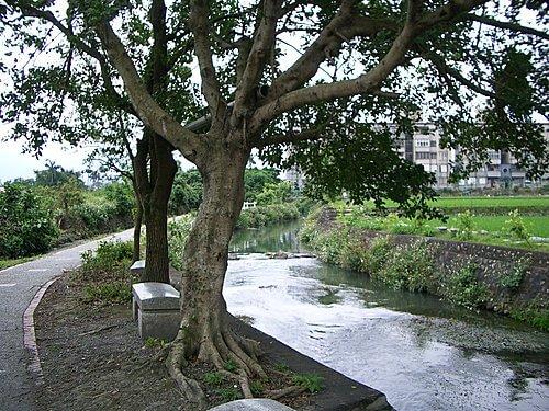 20060408-北成自行車道 2