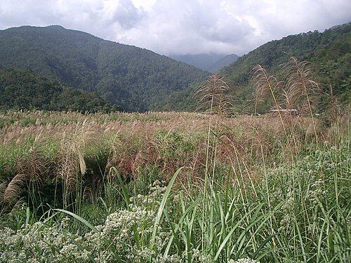 20051113-松羅步道