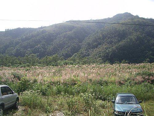 20051113-松羅步道 28