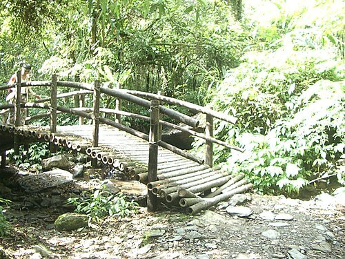 20051113-松羅步道 31
